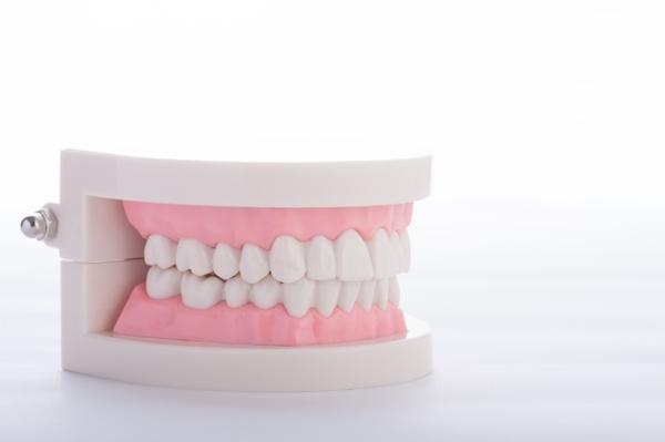 保険適用入れ歯と自費入れ歯の比較
